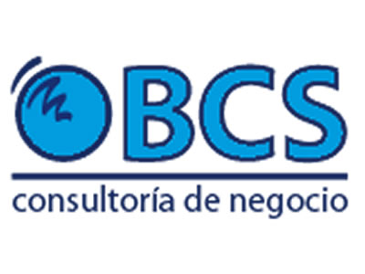 BSC CONSULTING